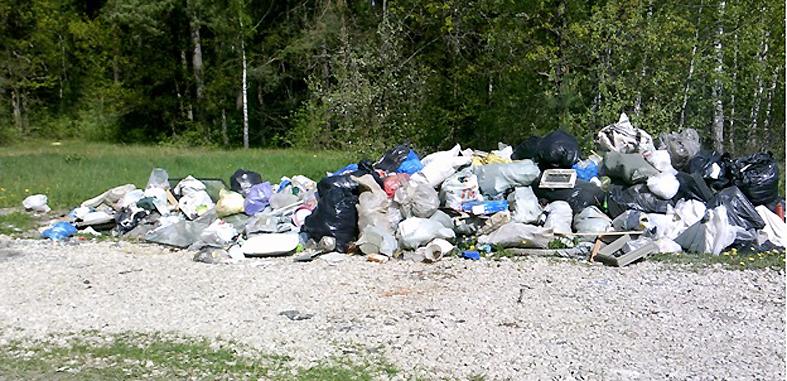 Гранный Холм грозит утонуть в мусоре