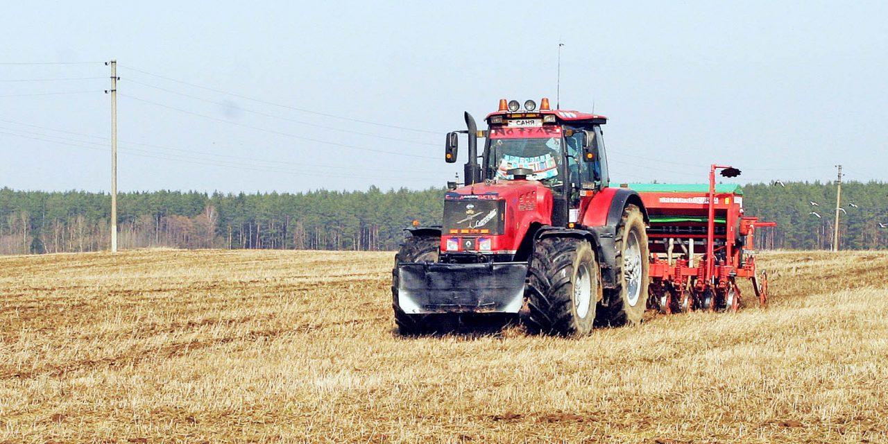План по севу яровых-зерновых и посадке картофеля в Козельском районе перевыполнен