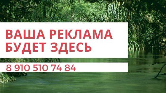 В Жиздре сильно поднялся уровень воды