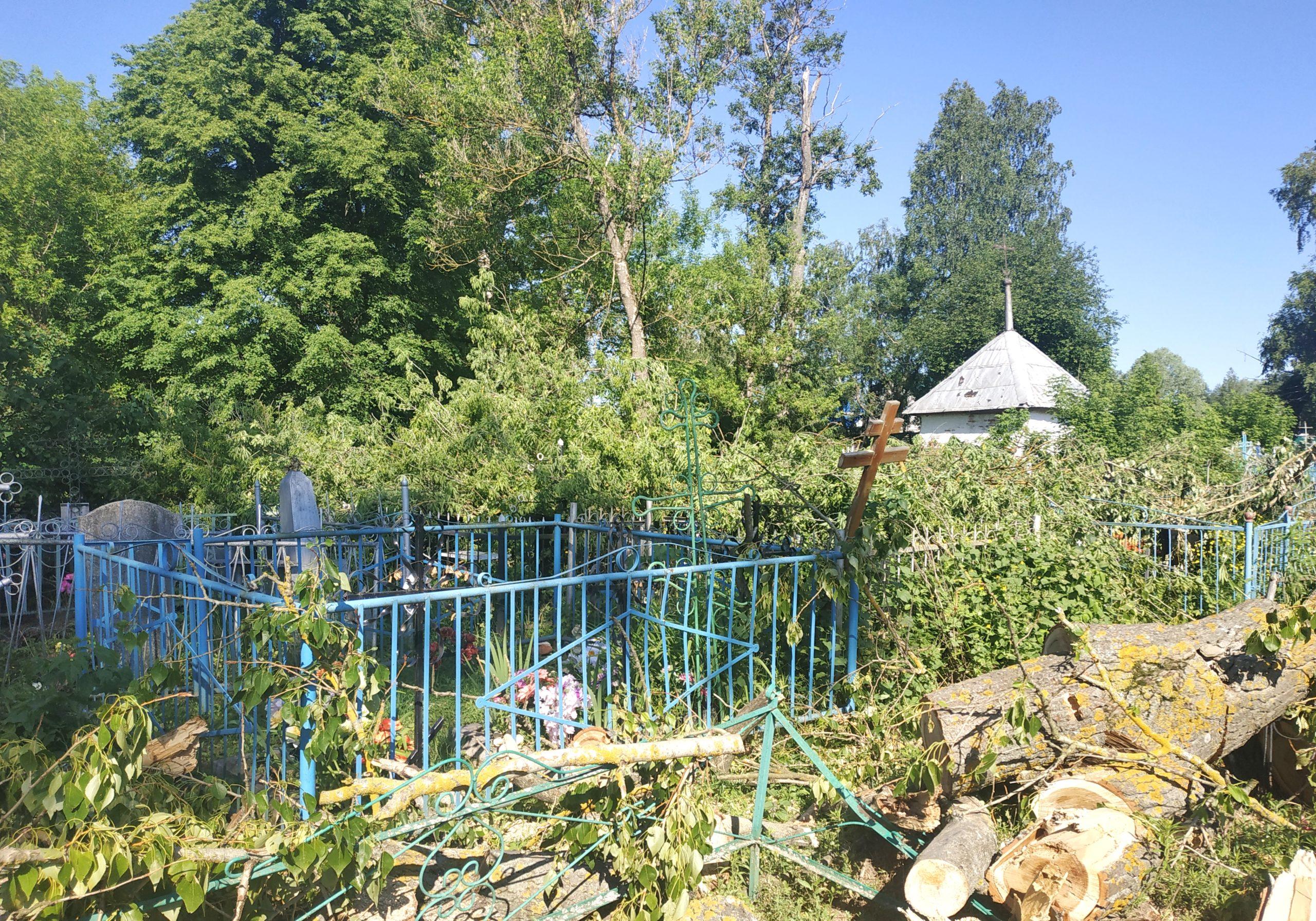 В Нижних Прысках приводят в порядок кладбище. Репортаж с народного субботника
