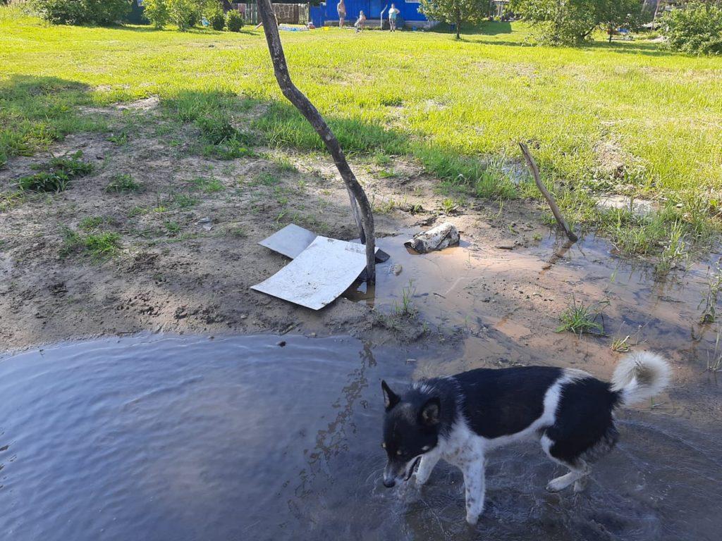 Отчитались, но не починили. Жители села Березичский стекольный завод снова жалуются на прорыв водопровода в районе ж/д-переезда