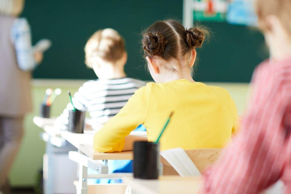 Материал недели. «Никакого закрытия школ 20 сентября не планируется!»