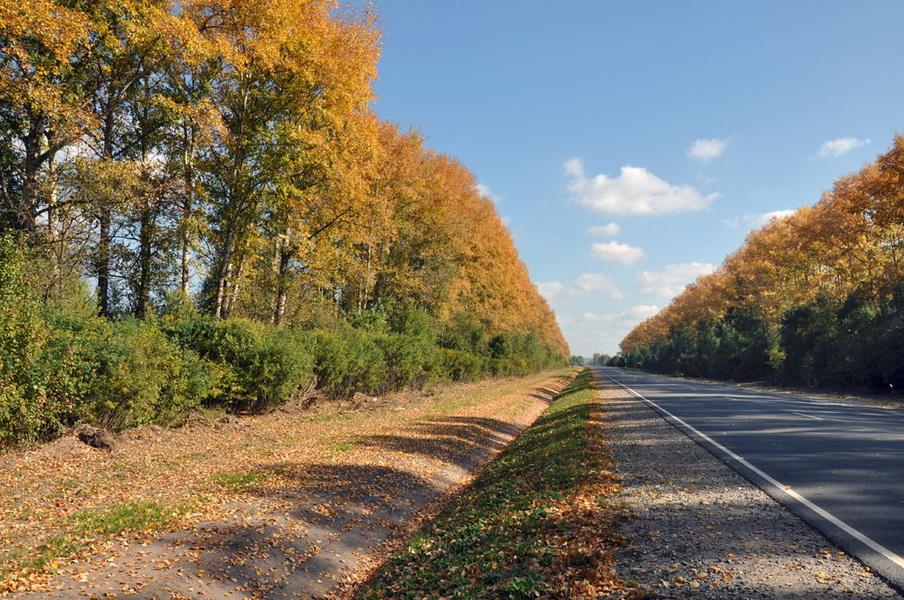 Осенний Козельск